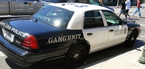 Youth Gangs in the Twenty-First Century: Back to the Future
