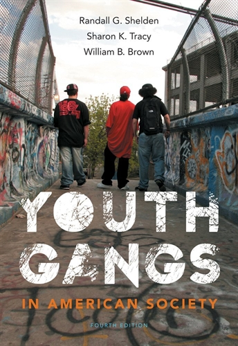 an analysis of gangs in american society Criminality and exit a report prepared for catch22 tara young by the end an analysis of gangs in our society of our sample.