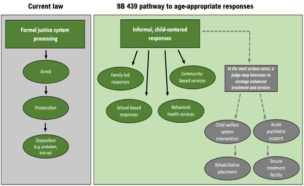 SB 439 pathway to age-appropriate responses